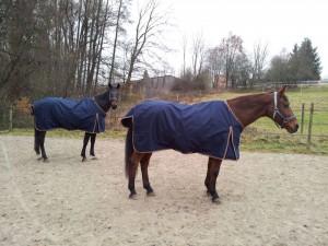 Weidedecke für Pferde